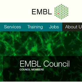 George was appointed (together with Prof. Manolis Dermitzakis, University of Geneva) as the Greek National Representative to the EMBL Council!
